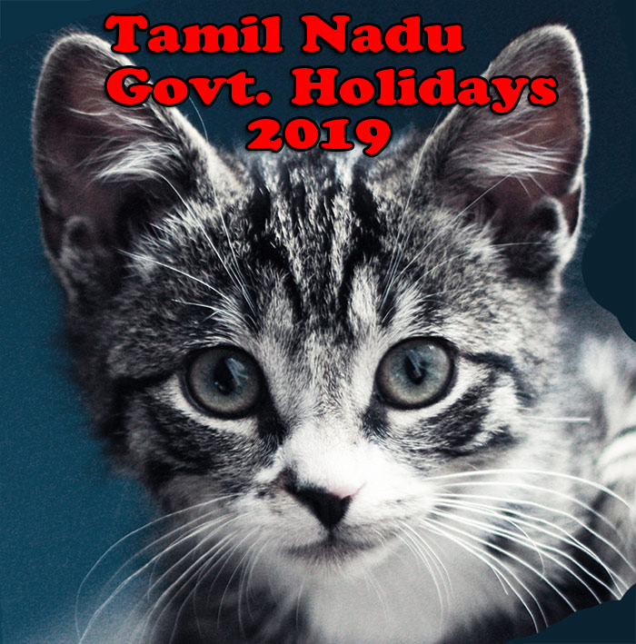 Tamil Nadu Government Holiday List 2019